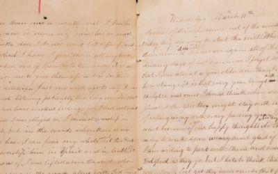 Fanny's Forgotten Journal: Secrets of an 1860s Pioneer Girl in Elk Rapids, Michigan
