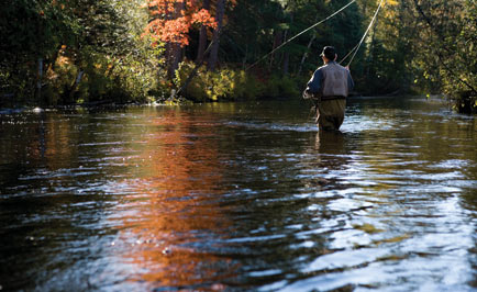 Fishing forecast for trout opener for Michigan fish limits