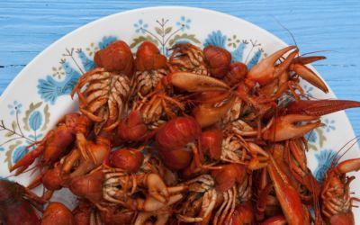 Throw a Crayfish Feast in Northern Michigan