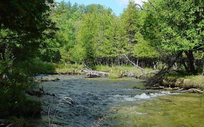 Hike Grass River and Jordan Valley Pathway: With Video