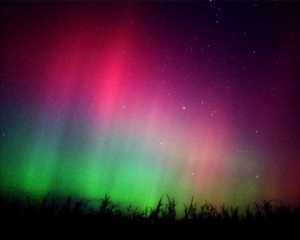 Dark Sky Park Teaches How To See Northern Michigan S