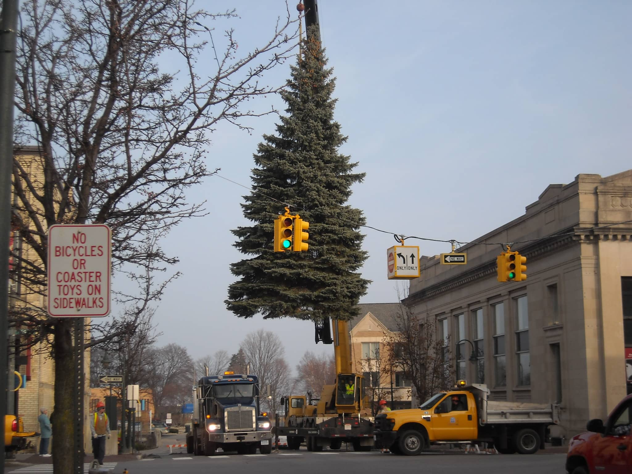 Christmas Tree Locator