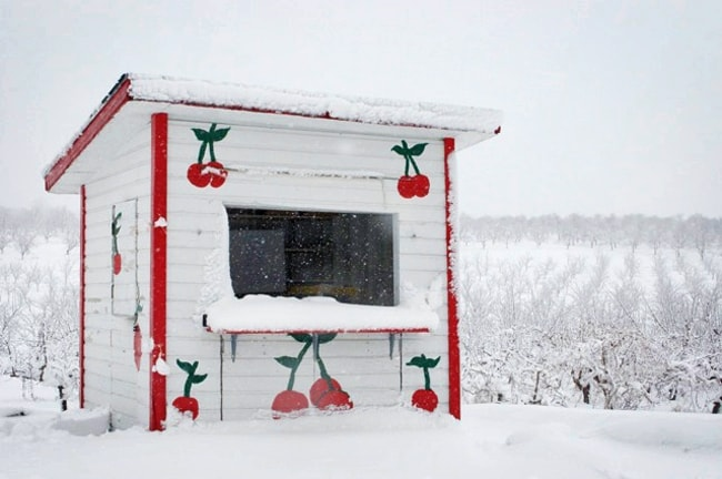 Cherry Stand, Old Mission Peninsula