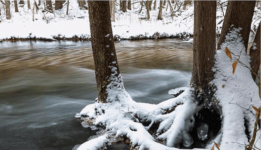 photo-by-todd-zawistowski_traverse-magazine_0213