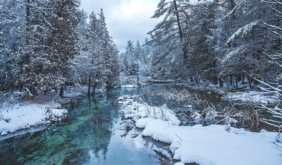 Shalda Creek Michigan