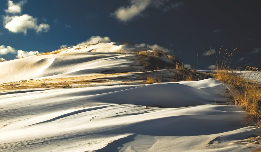 dunes in winter mark lindsay