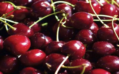 ShopMyNorth: Cherry Gift Ideas