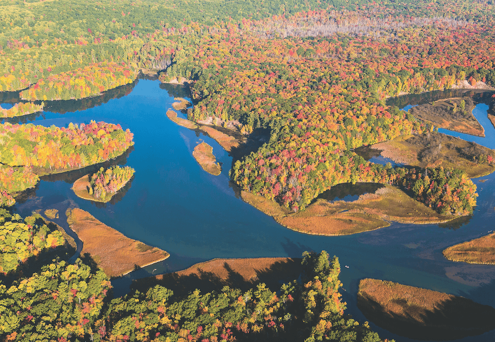 Manistee River Valley