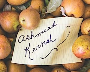 ashmead apple