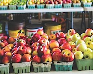 more apple varieties
