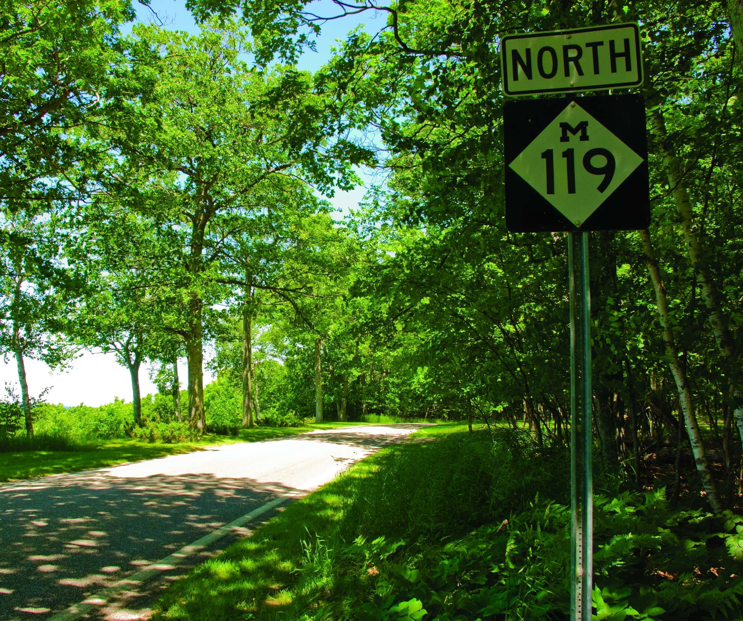 Plan Your Trip to M-119\'s Tunnel of Trees (Insider Tips!) - MyNorth.com
