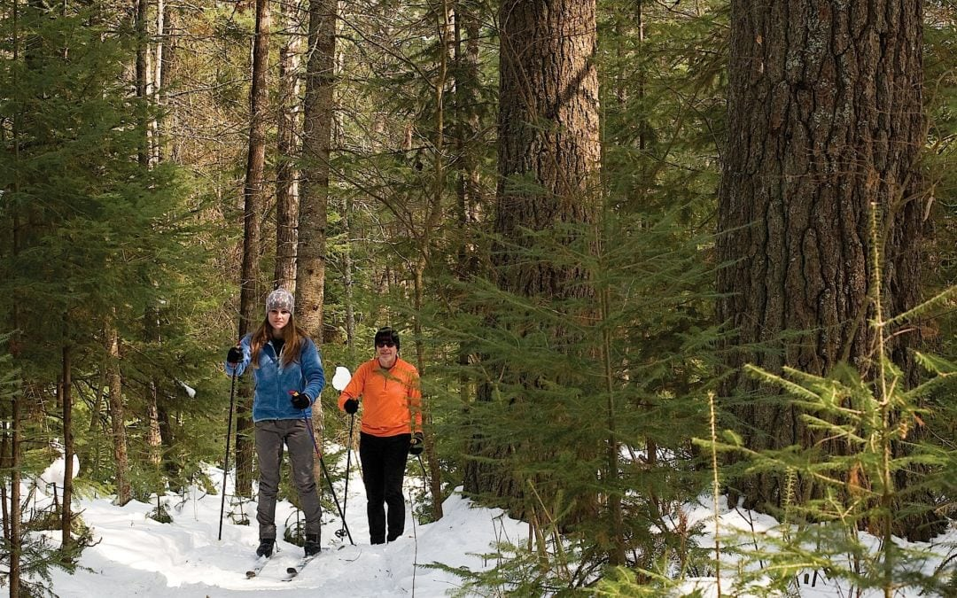 cross-country ski trails in traverse city