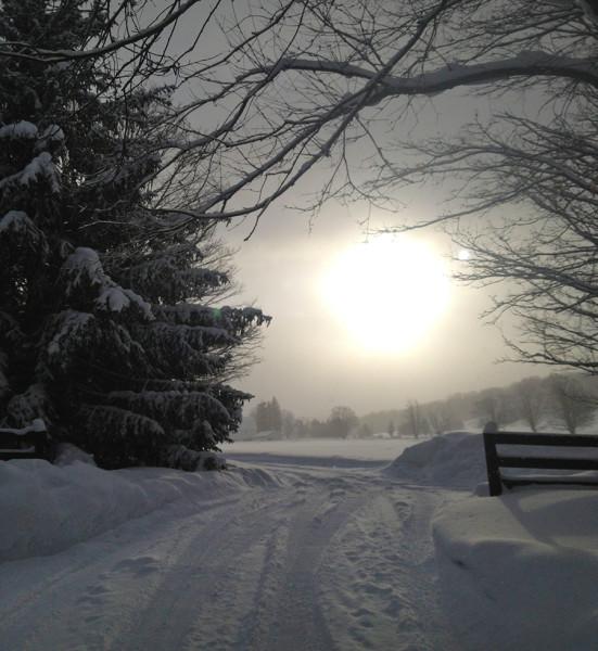 maplecity_snow
