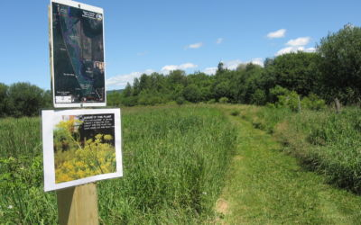 Safe Northern Michigan Hiking Trails During Hunting Season