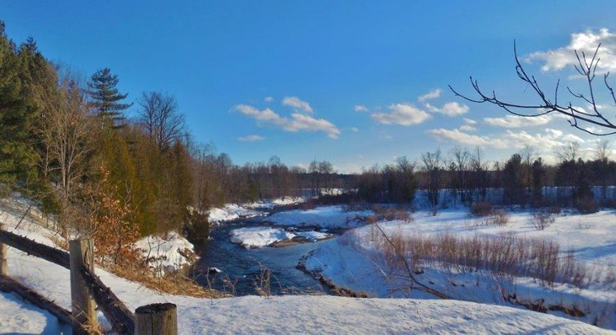 Boardman River in winter (4)