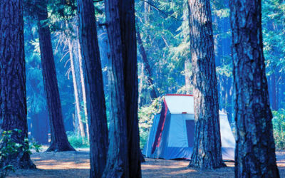 Sleeping Bear Dunes National Lakeshore Camping