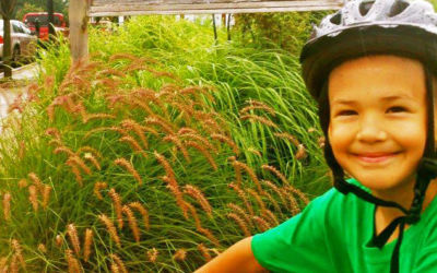 Help Raise Funds to Support Carter's Compost, Traverse City's Kid-Powered Composter