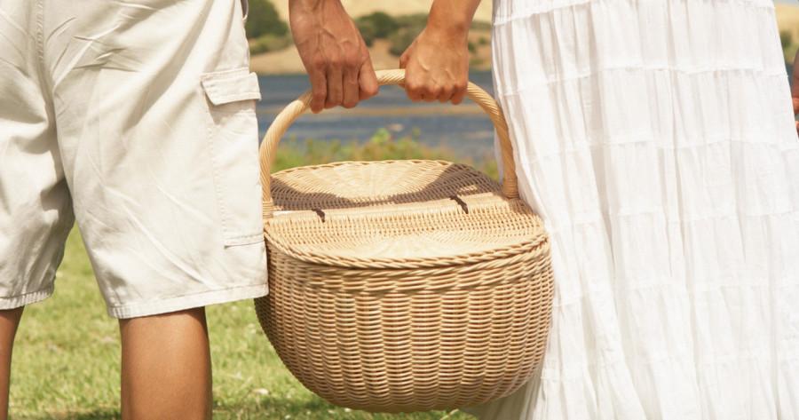 traverse city beach picnic