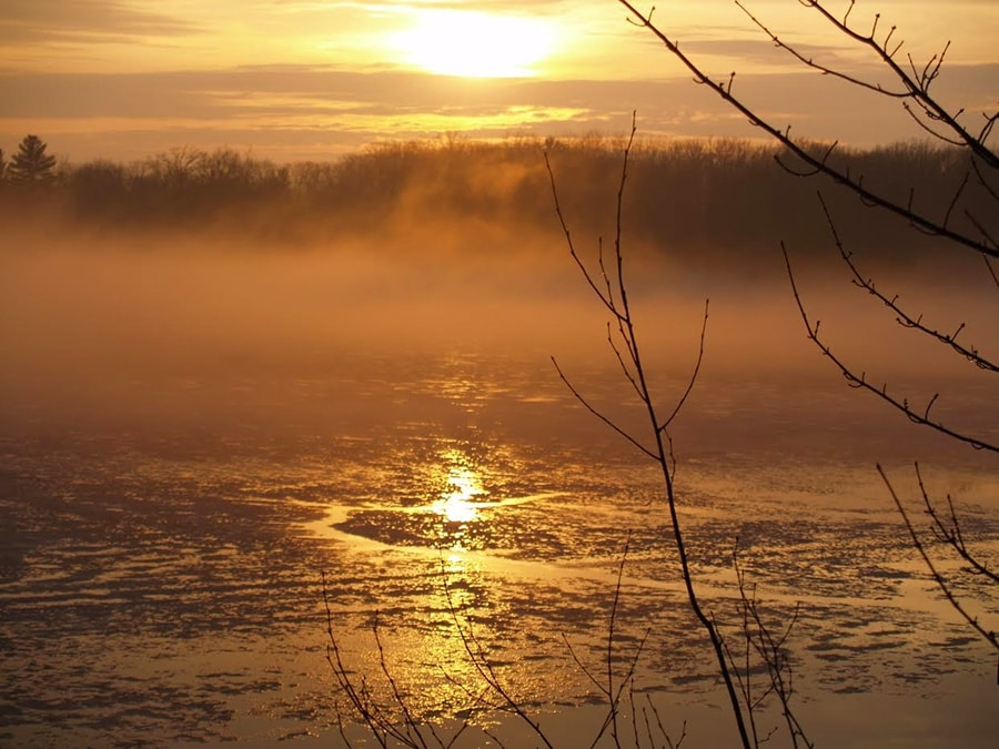 highlake_fog