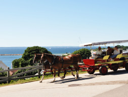 Top 10 Mackinac Island Attractions
