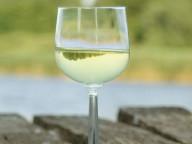 northern michigan white wine