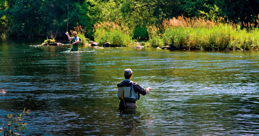 Trout streams book perfect for Michigan anglers