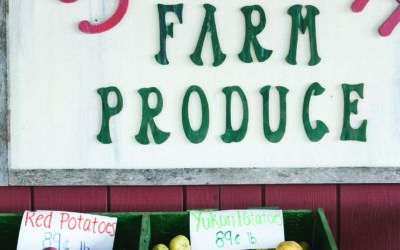 5 Northern Michigan Farm Markets