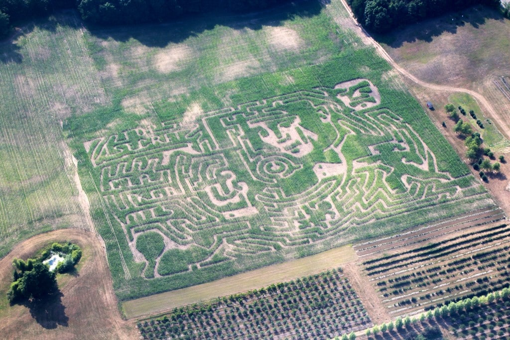 An aerial view of Jacob's 2014 Corn Maze!