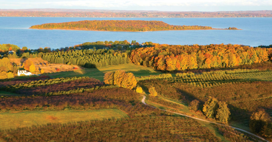 Old Mission Peninsula fall color