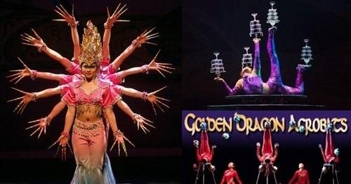 golden dragon acrobats traverse city