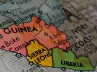 Edited Guinea