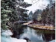 snowvember_glenarbor
