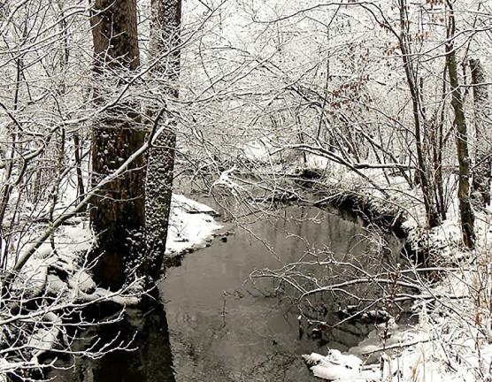 wintercreek1