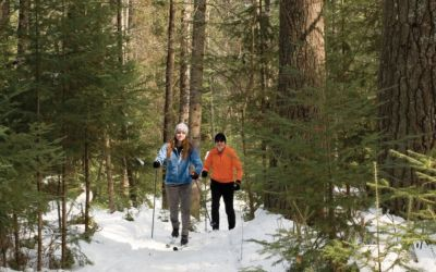 10 Groomed Cross Country Ski Trails in Northern Michigan