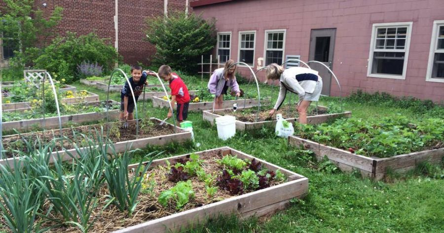 School Garden Workshop In Northern Michigan Mynorth Com