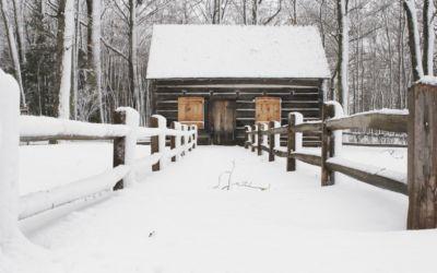 Petoskey Real Estate: Designer Log Cabin Home