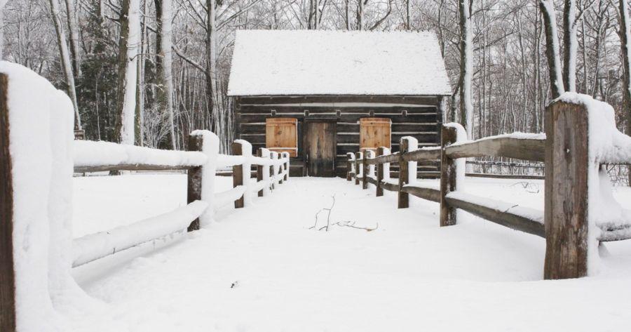Into the Wild: Northern Michigan Lodging – MyNorth com