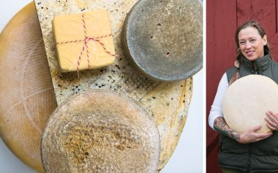 Meet Sue Kurta, Owner and Maker of Boss Mouse Cheese