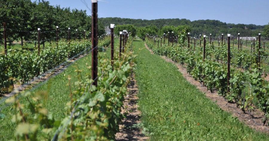 april michigan wine month