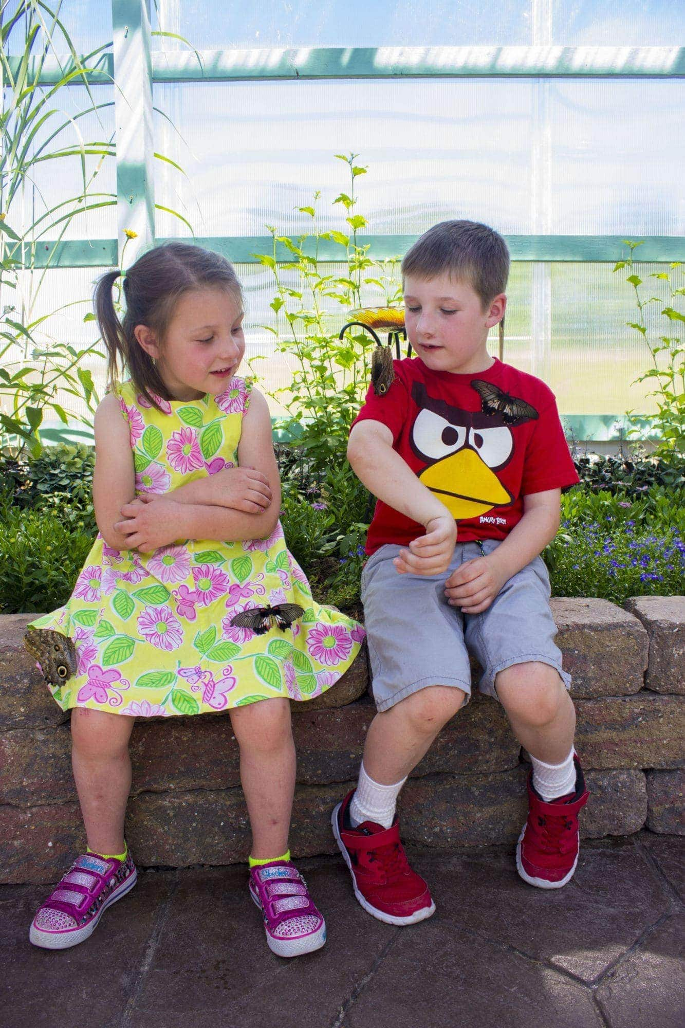 Four-year-old Alayna Thompson and six-year-old Beau Thompson stopped by the G.T. Butterfly House & Bug Zoo with their grandparents while visiting from Kentucky.