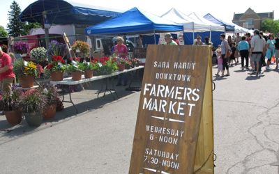 6 Reasons to Get the Kids to a Northern Michigan Farmers Market
