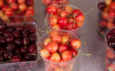 Foodie Events at the National Cherry Festival 2015