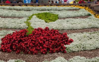 Traverse City National Cherry Festival Vacation Planner 2015