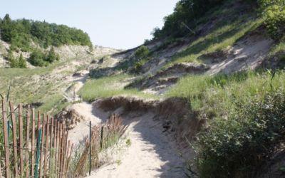 Hike Arcadia Dunes: Old Baldy Trail