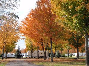 Fall-at-Kampvilla