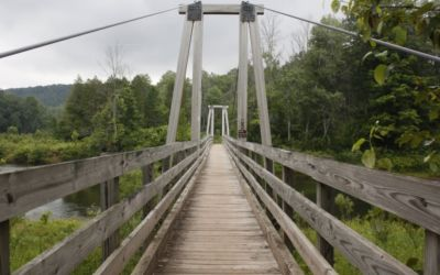 Hike the Manistee River Trail