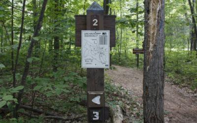 Hike the Lake Ann Pathway