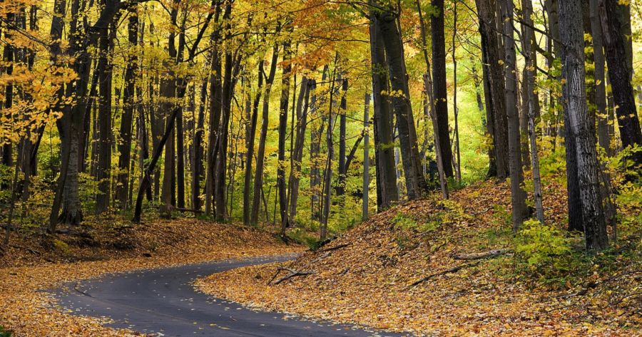 best scenic autumn drive
