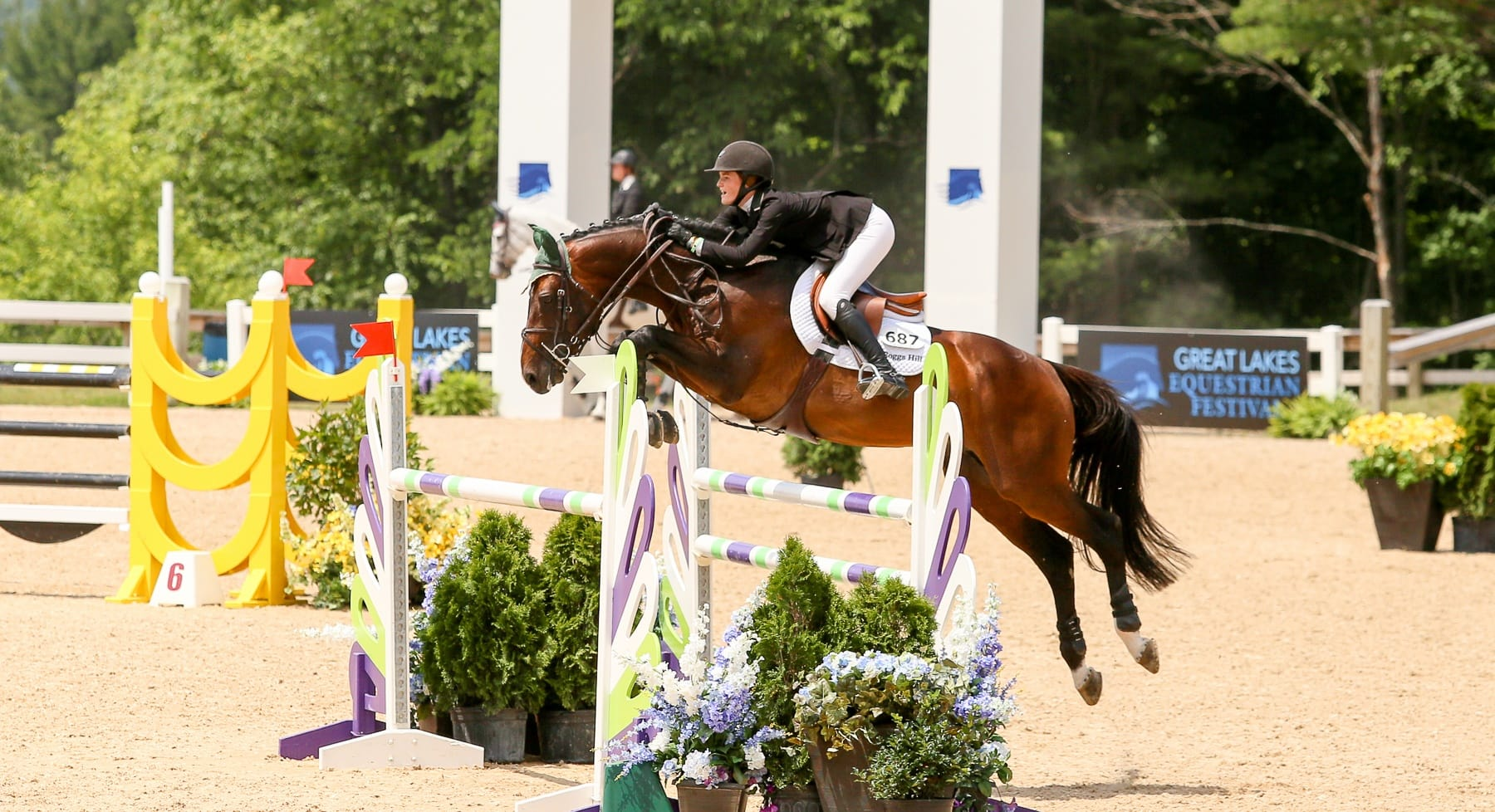 Great lakes equestrian festival 2016 in traverse city for Craft shows in traverse city mi