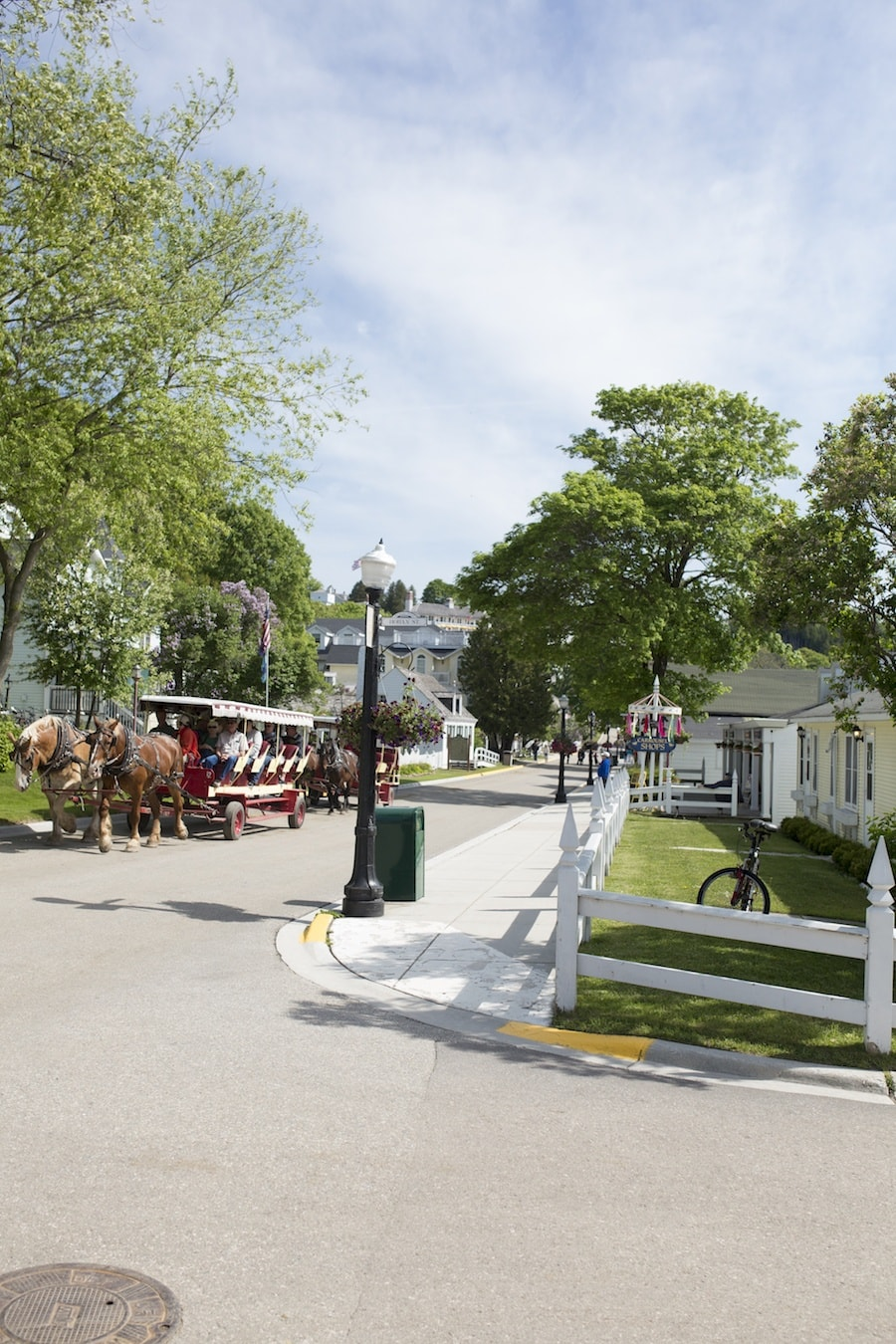 Mackinac Island carriage ride